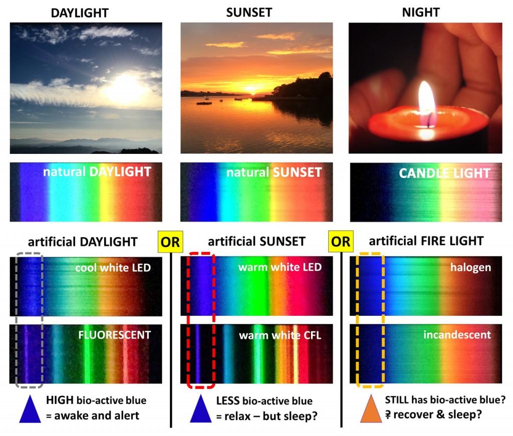 figure3b_artificial_light_final_s