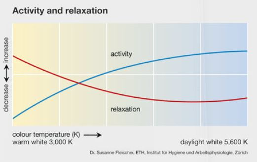 activity_vs_relaxation_lichtwissen