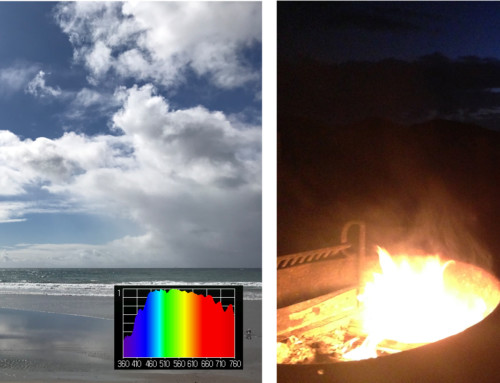 Natural Light Versus Artificial Light Sunlight Inside